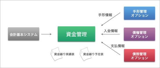 資金管理オプション